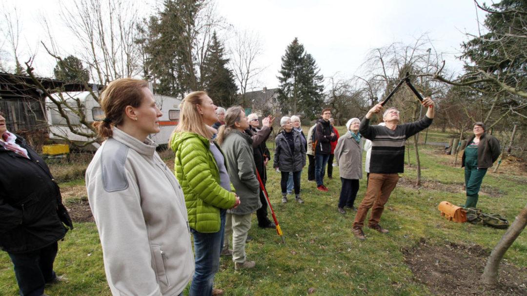 Steinbergfrauen suchen männer