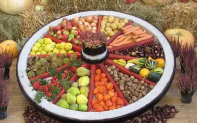 20. Obst- und Erntedankausstellung